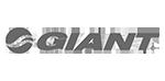 logo-giant_150x74